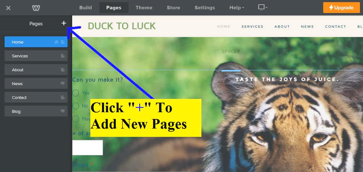 Click on page & use + button to add new pages.