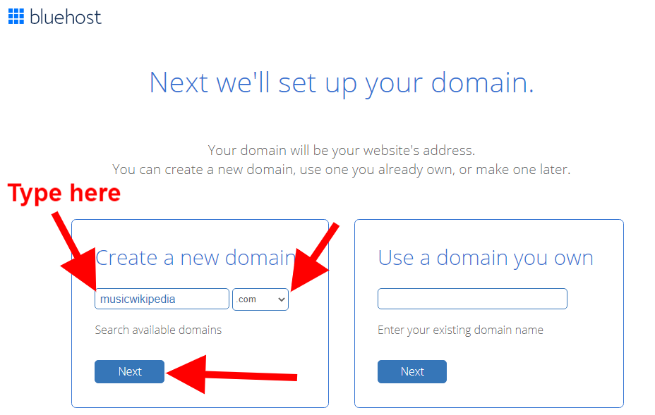 Choose your domain name for your Wikipedia website