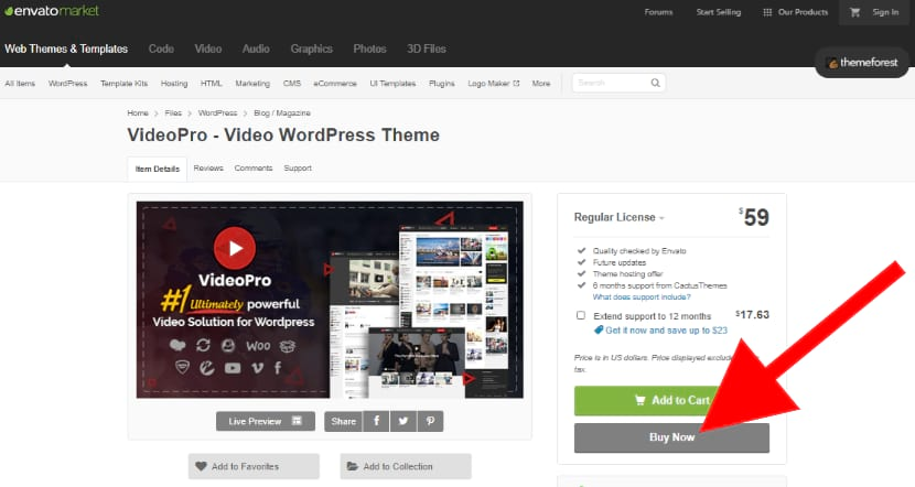 Video Pro Theme for YouTube Like Website Creation