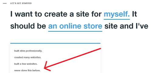 Wix online store website beginning