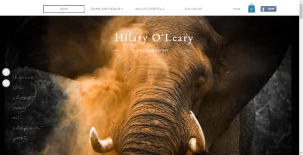 best photography website Hilary oleary