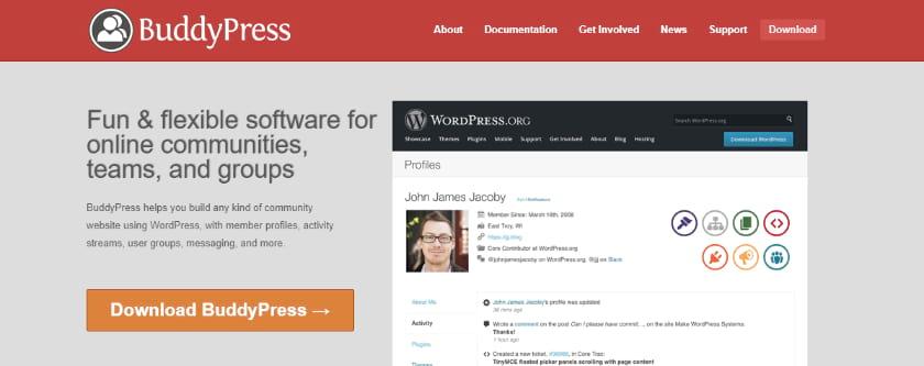 BuddyPress Plugin for social communication Screenshot