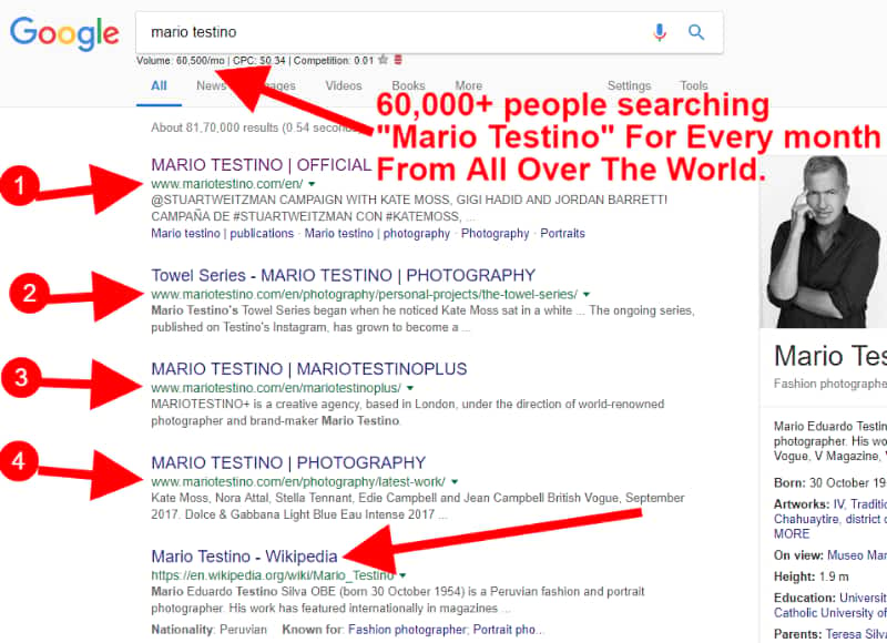 Maria Testino website on google search