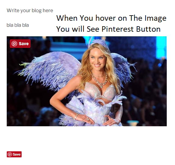 pinterest pin button on the image example